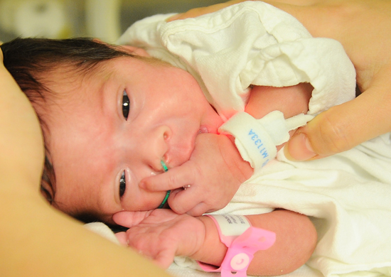 The Developmental Care and Early Intervention Program for Premature